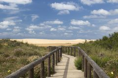 Wooden walkway leading to Bordeira Beach, Portugal Royalty Free Stock Image