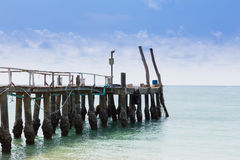 Wooden walkway leading to the ocean, natural skyline background Royalty Free Stock Image