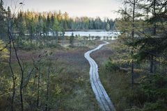 Wooden walkway leading to small trout lake in northern Minnesota stock photography