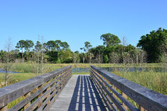 Welcome To The Swamp. A wooden walkway leads to a swamp park in Florida royalty free stock photos