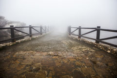 Wooden walkway lost in the fog Stock Photography