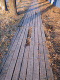 Wooden walkway made of planks Royalty Free Stock Images