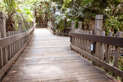 Wooden walkway Royalty Free Stock Photos