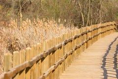 Wooden Walkway Stock Photography
