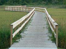 Wooden Walkway in Michigan. Wooden walkway leading to a forest trail in Michigan Stock Photos