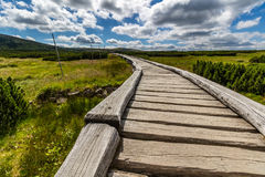 Wooden walkway in the national park Krkonose, Czech Republic Royalty Free Stock Photo