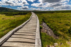 Wooden walkway in the national park Krkonose, Czech Republic Stock Photography