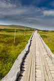 Wooden walkway in the national park Krkonose, Czech Republic Royalty Free Stock Photography