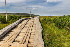 Wooden walkway in the national park Krkonose, Czech Republic Royalty Free Stock Photos