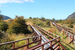 Wooden walkway Stock Photo