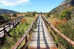 Wooden walkway Royalty Free Stock Image
