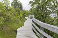 Wooden walkway in nature park Stock Photos