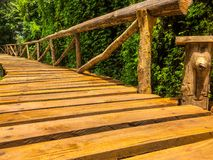 Wooden walkway nature walk on a forest royalty free stock photo