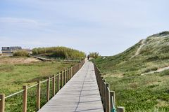 Wooden walkway over the dune royalty free stock photography