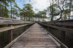 Wooden Walkway Over Marsh Royalty Free Stock Photo