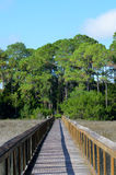 Wooden walkway over marshy land Stock Photography
