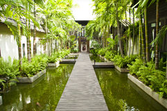 Wooden walkway over pond. Royalty Free Stock Image