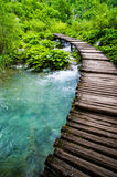Wooden walkway over stream Royalty Free Stock Image