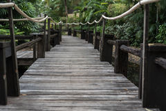 Wooden walkway over the water Stock Photos