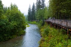 Wooden walkway overlooking Fish Creek in Hyder, Alaska Royalty Free Stock Photos