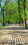 Wooden walkway in a park Royalty Free Stock Photography