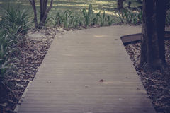 Wooden walkway in park Stock Image