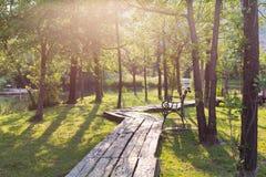 Wooden walkway in the park Stock Photos