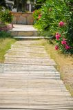 Wooden walkway, a passage near the flowers, moving through folders stock photos