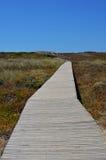 Wooden walkway path on the coast Stock Photos