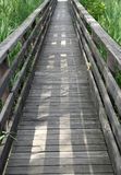 Wooden walkway in the reeds of a naturalistic Park 4 Stock Images