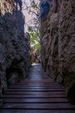 Wooden walkway between the rocks Stock Photography