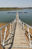 Wooden walkway Stock Images