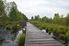 Wooden walkway at Soumarske raseliniste Royalty Free Stock Photos