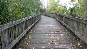 Wooden walkway sprinkled with fall leaves. Royalty Free Stock Images