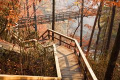 Wooden Walkway and Suspension Bridge over the Tallulah River Stock Photography