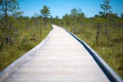 Wooden walkway on the swamp. Viru Raba, Lahemaa park, Estonia Stock Photography