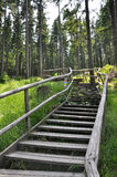 Wooden walkway to Boubin top Stock Image