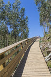 Wooden walkway to the mountain Stock Photos