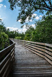 WOODEN WALKWAY TO AN UNKNOWN Stock Images