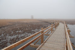 Wooden walkway and wildlife observation tower in a lake natural Royalty Free Stock Photos