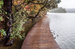 Wooden walkway in winter Royalty Free Stock Photography