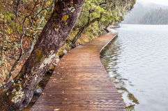 Wooden walkway in winter Stock Photo