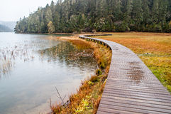 Wooden walkway in winter Royalty Free Stock Photos