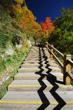 Wooden walkways Stock Photo