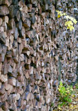 Wooden wall. Photo of wooden wall in park Stock Images