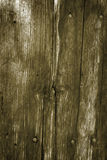 Wooden wall background with rusted nails Stock Photos