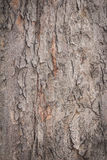 Wooden wall for background usage Stock Image