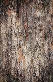 Wooden wall for background usage Royalty Free Stock Image
