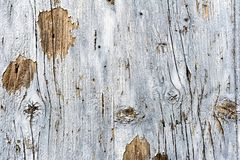 Wooden wall for background royalty free stock photo