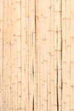 Wooden wall of bamboo Royalty Free Stock Photography